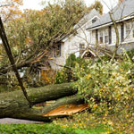 After The Storm: What To Do When Your Home Is Damaged.