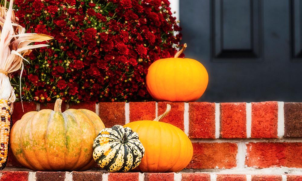 Pumpkins at doorstep